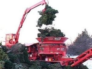 recycle christmas trees near me recycle your tree eastleigh news