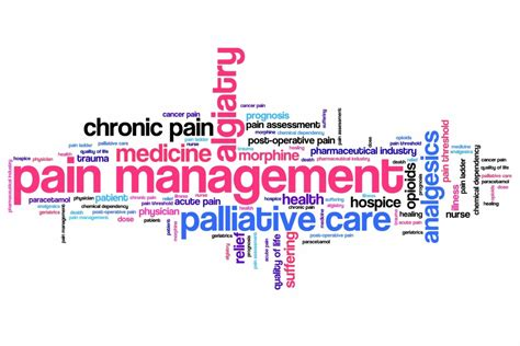 pain management  older adults  claude pepper center