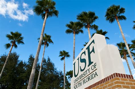 5 Famous People You Didn't Know Went To Usf