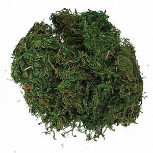 5x(CF88 Green Artificial Reindeer Moss For Lining Plant