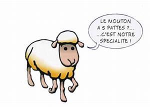 Le Mouton A 5 Pattes : je veux page 647 d tente loisirs forum high tech ~ Louise-bijoux.com Idées de Décoration