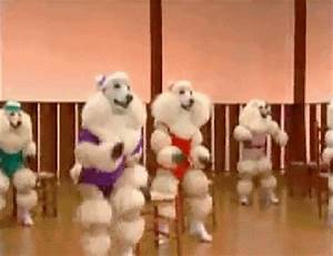 animal, animals, dancing, dog, dogs - animated gif #235481 ...