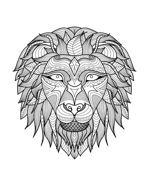 Africa Lion Head 2 Africa Adult Coloring Pages