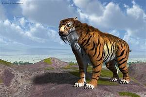 Sabertooth Tiger (Smilodon Fatalis) by nDelphi on DeviantArt