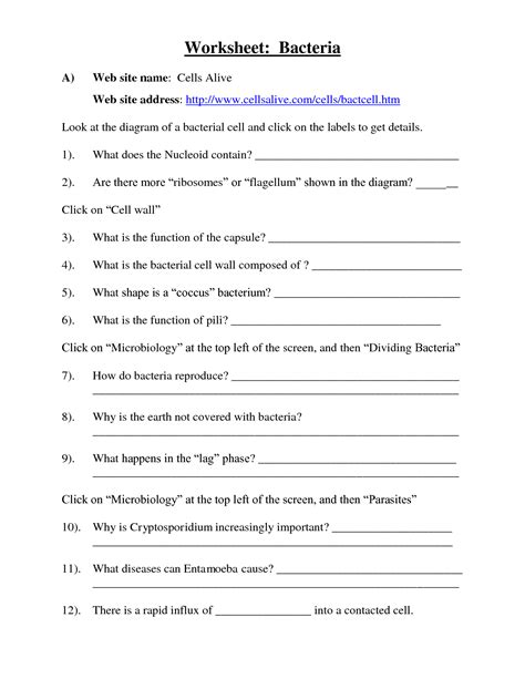 virus and bacteria worksheet 14 best images of viruses and bacteria worksheets bacteria and viruses worksheet answers