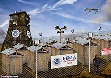Image result for fema camps