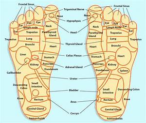 Best 25  Foot Massage Diagram Ideas On Pinterest