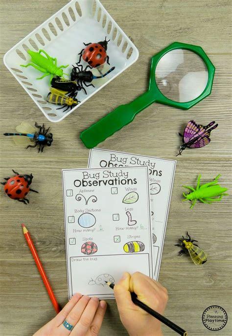 199 best insect preschool theme images on bugs 344 | 1358ec0b5ea60d388d9e3389299a9e15