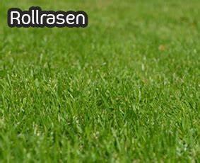 Rollrasen Kaufen Berlin : rollrasen kaufen in berlin und brandenburg ~ A.2002-acura-tl-radio.info Haus und Dekorationen