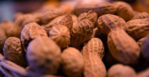 cuisine scientifique cafe scientifique expert to about food allergies