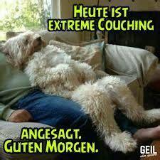 Glueckliche Haustiere Was Hunde Brauchen by Bildergebnis F 252 R Geil Aber Gest 246 Rt Bilder Guten Morgen