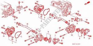 Water Pump For Honda Cars Civic Vti 3 Doors 5 Speed Manual