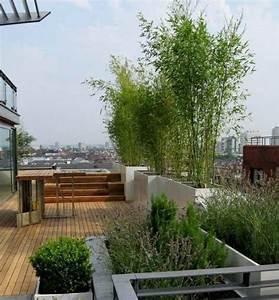 Bambus Pflanzen Sichtschutz : bambus als sichtschutz ~ Sanjose-hotels-ca.com Haus und Dekorationen