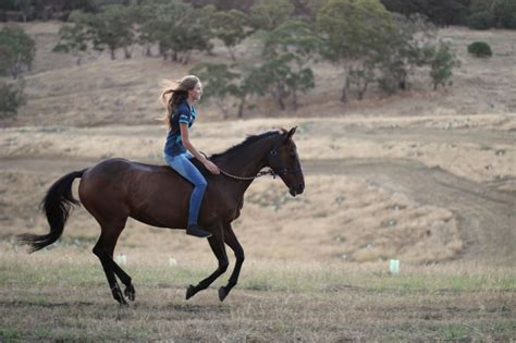 Ride A Horse, And Ride A Horse Bareback. Green Coffee Bean Max Side Effects Zenith Nutrition Extract Alkaline Or Acidic Ikea Tables Usa Benno Table Price Advance Fit Versus Garcinia Cambogia Hemnes Dimensions