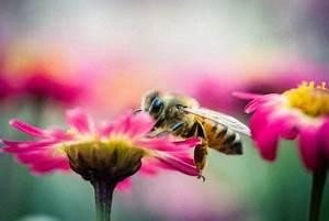 Insektenschutztür Ohne Bohren : eine fliegengittert r ohne bohren anbringen so geht s wohnen und lifestyle auf dem immobilien ~ Orissabook.com Haus und Dekorationen