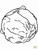Cabbage Coloring Pages Cabbages Drawing Printable Vegetables Paper Puzzle Categories sketch template