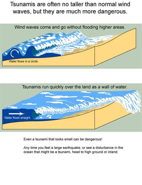 Formation The Physics Tsunamis How Tsunami Formed
