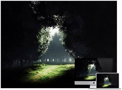 Dark Desktop Wallpapers Stunning Shadow Trees Designing