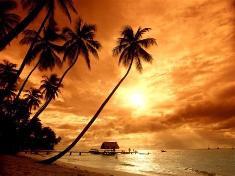 the of sunset skitzone