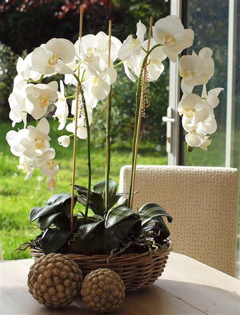 deko mit orchideen moderne ideen ideentop