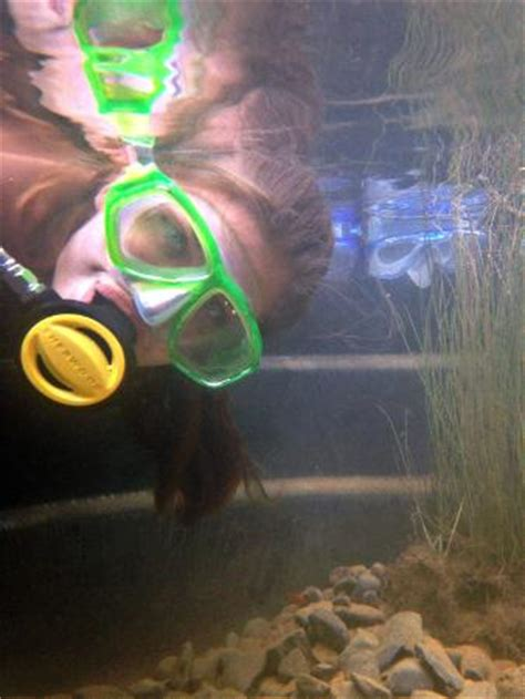 aqua pa phone number springs aqua park bethlehem pa top tips before
