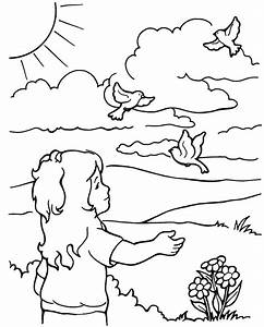 Birds of the Air - Coloring Page
