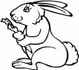 Coloring Carrot Rabbit Holding Healthy Tocolor Line sketch template