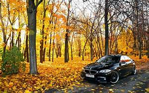Car, Bmw, Leaves, Trees, Road, Wallpapers, Hd, Desktop, And, Mobile, Backgrounds
