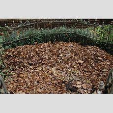 Types Of Mulch Organic Mulch Extension