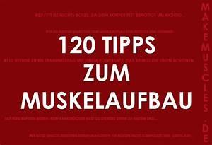 Kalorienbedarf Muskelaufbau Berechnen : muskelaufbau make muscles ~ Themetempest.com Abrechnung