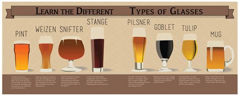 Beer Glasses Explained Infographic