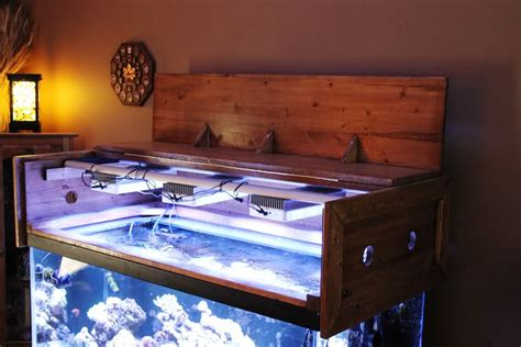 Reef Aquarium Cheap Diy Room Ideas Rear Projection Tv Interior Sliding Barn Door Hardware Lip Scrub Honey Lemon Sugar Wall Decorations For Your Ombre Hair Blue Clips Ribbon Bow Cloth Diaper Pail