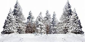 Snow Tree Png | www.pixshark.com - Images Galleries With A ...