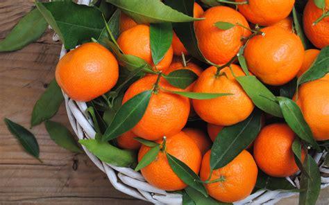tarte aux mandarines dessert recettes de cuisine le