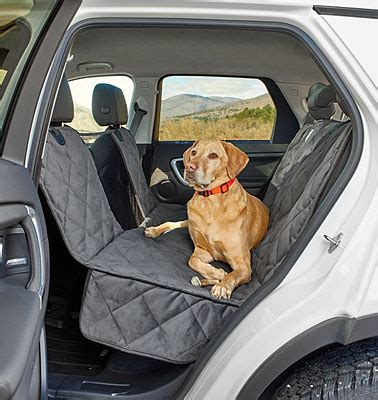 Car Seat Hammock For Dogs by Windowed Hammock Car Seat Protector Grip Tight