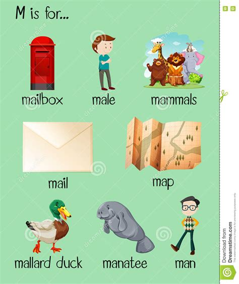 many words begin with letter n illustration 453895348 many words begin with letter n vector illustration 45105