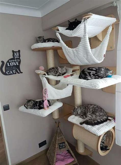 creative diy cat room decor homemydesign