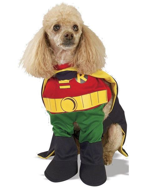 robin dog robin dog costume
