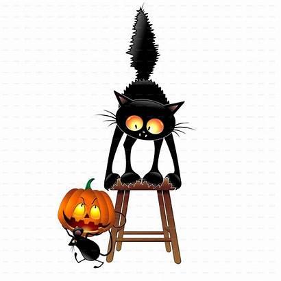 Halloween Cat Cartoon Pumpkin Funny Mouse Scared