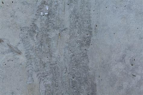 concrete wall 15 free white wall textures free premium creatives