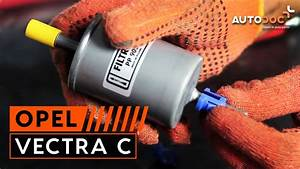 How To Replace Fuel Filter On Opel Vectra C Tutorial
