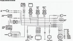 Yamaha Blaster Wiring Diagram  U2014 Raffaella Milanesi