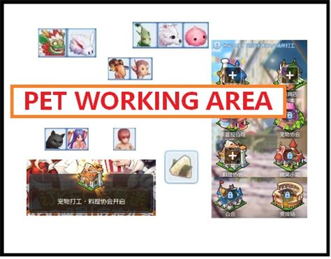 pet labor working area list ragnarok  mobile