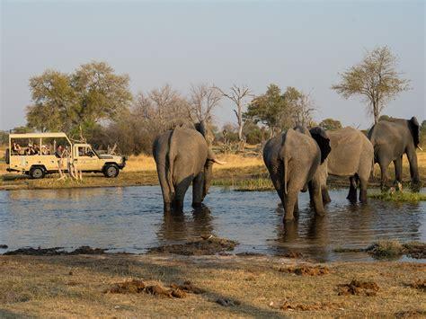 Southern African Safari Holidays