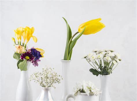 foto vasi di fiori composizione di fiori freschi in vasi scaricare foto gratis
