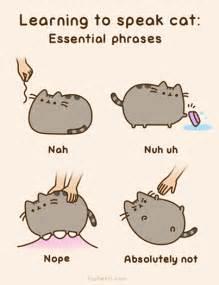 plusheen cat learning to speak cat pusheen the cat photo 37087779