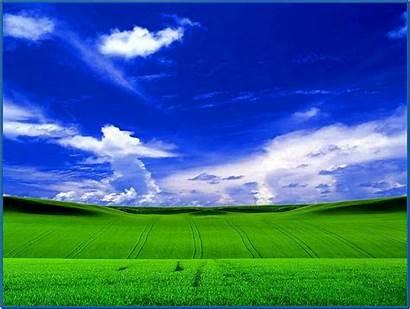 Xp Windows Screensaver Nature Screensavers Biz Desktop