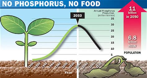 what does phosphorus do for plants nutrient mobility in the soil