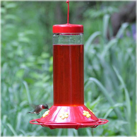 best hummingbird feeder pet hummingbird glass best bird feeder at hayneedle