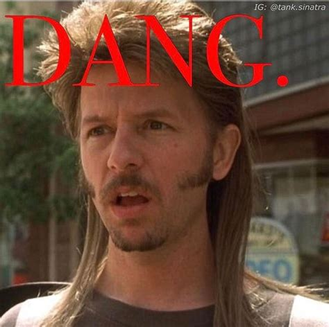 Dang Meme - joe dirt dang meme www pixshark com images galleries with a bite